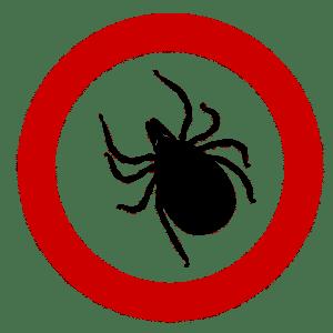 Ilustracja przedstawiająca kleszcza (pasożyt zrodziny pajęczaków) wewnątrz znaku zakaz wstepu